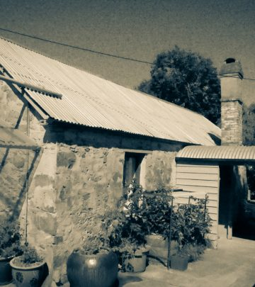 Image of Wool Shed - Horse Park Homestead - Heritage